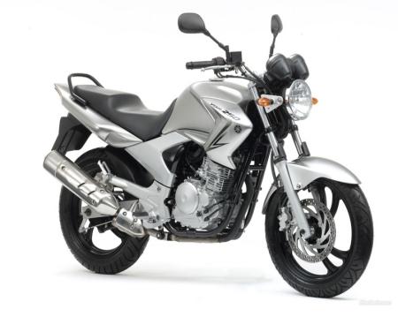 YBR2501